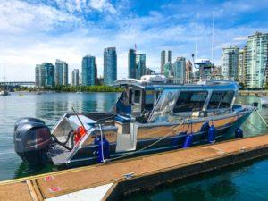 Walker Custom Aluminum Boat Audio