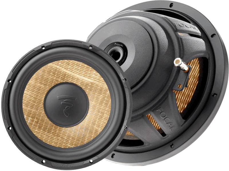 Product Spotlight: Focal Expert P25FS